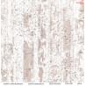 Dwustronny papier DREAM GARDEN/05 ScrapBoys 30x30cm