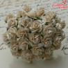 Kwiaty Róża 25mm Kość słoniowa ciemna 10szt. /20