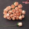 Kwiaty Pączki Róży Peach 0,8cm-1cm 10szt.  /89