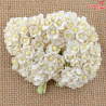 Kwiatki Sweetheart White Mini 10szt.   /97