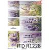 Papier ryżowy ITD R1228