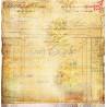 VINTAGE TREASURE - 05 - dwustronny papier 30,5x30,5cm /CraftOCloc