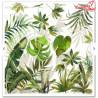 Zestaw papierów 30x30 SLS-010 ''Tropical dreams''