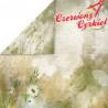 BLOSSOM MEADOW / zestaw Craft&You Design 15x15